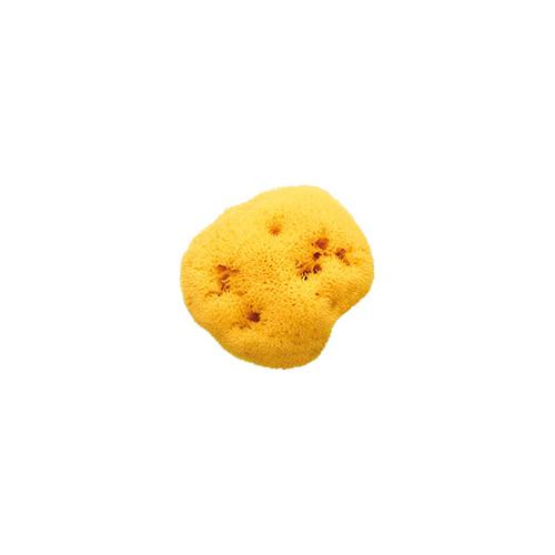 Hubka na umývanie Honeycomb 14
